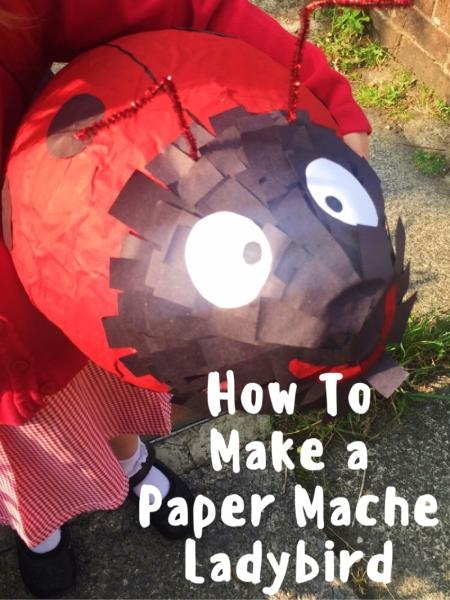 How To Make a Paper Mache Ladybird